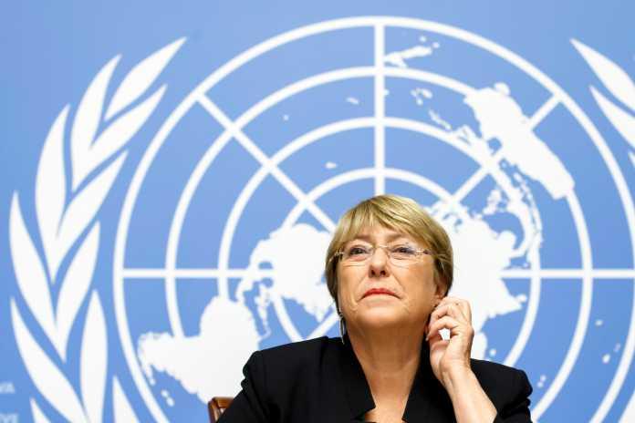 UN Human rights director